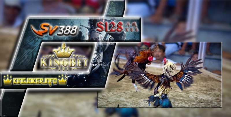 Situs S128 Tempat Daftar Laga Ayam Jago Paling Trending